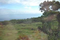 Açores-(40)