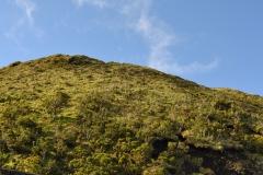 Açores-(49)