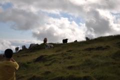 Açores-(47)