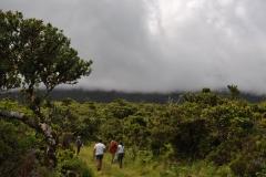 Açores-(66)