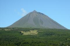 Pico-(4)