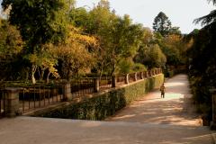 jardim-botanico-coimbra